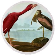 Scarlet Ibis Round Beach Towel by John James Audubon