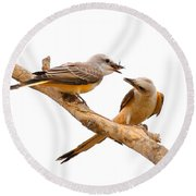 Scissortails Sharing Cricket Round Beach Towel by Robert Frederick