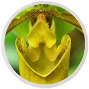 Smile - Orchid Art Photograph By Sharon Cummings Round Beach Towel by Sharon Cummings