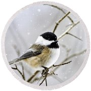 Snowy Chickadee Bird Round Beach Towel by Christina Rollo