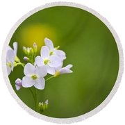 Soft White Cuckoo Flowers Round Beach Towel by Christina Rollo
