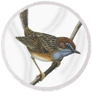 Southern Emu Wren Round Beach Towel by Anonymous