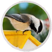 Spring Chickadee Round Beach Towel by Christina Rollo