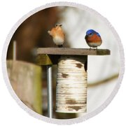 Spring Songbirds Round Beach Towel by Bill Cannon