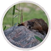 Stealth Mode Round Beach Towel by Bianca Nadeau