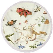 Study Of Insects And Flowers Round Beach Towel by Ferdinand van Kessel