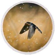 Swallow In Rain Round Beach Towel by Robert Frederick