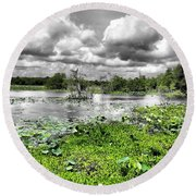 Swamp Round Beach Towel by Dan Sproul