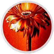 Tequila Sunrise Zinnia Round Beach Towel by Sherry Allen