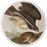 The Common Buzzard Round Beach Towel by John James Audubon