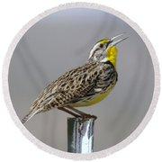 The Meadowlark Sings  Round Beach Towel by Jeff Swan