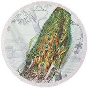 The Peacock Round Beach Towel by A Fournier