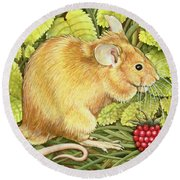 The Raspberry Mouse Round Beach Towel by Ditz