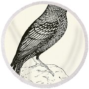 The Starling Round Beach Towel by English School