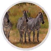 Three Amigos Round Beach Towel by David Stribbling