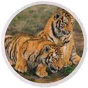 Tiger Cubs Round Beach Towel by David Stribbling