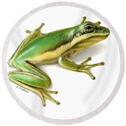 Green Tree Frog Round Beach Towel by Sarah Batalka
