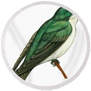 Tree Swallow  Round Beach Towel by Anonymous