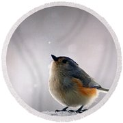 Tufted Titmouse Round Beach Towel by Cricket Hackmann