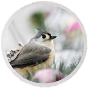 Tufted Titmouse Portrait Round Beach Towel by Christina Rollo