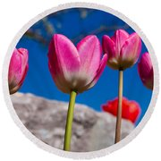 Tulip Revival Round Beach Towel by Chad Dutson