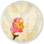 Vintage White Orchid Round Beach Towel by Delphimages Photo Creations