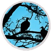 Vultures Round Beach Towel by Delphimages Photo Creations