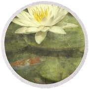 Water Lily Round Beach Towel by Scott Norris
