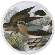 Wheatear Round Beach Towel by English School