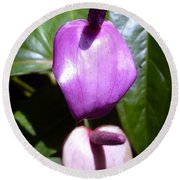 When The Anthurium Sees Its Shadow Round Beach Towel by Barbie Corbett-Newmin