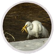 White Egret Snowy Bank Round Beach Towel by Robert Frederick