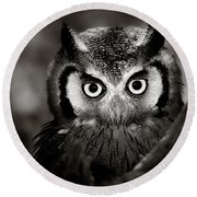 Whitefaced Owl Round Beach Towel by Johan Swanepoel