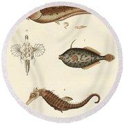 Wonderful Fish Round Beach Towel by German School