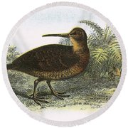 Woodcock Round Beach Towel by English School