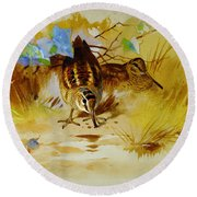 Woodcock In A Sandy Hollow Round Beach Towel by Celestial Images