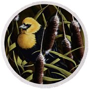 Yellow Headed Blackbird And Cattails Round Beach Towel by Rick Bainbridge