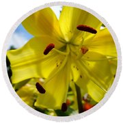 Yellow Whopper Lily 2 Round Beach Towel by Jacqueline Athmann