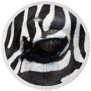 Zebra Eye Round Beach Towel by Linda Sannuti