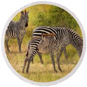 Zebras South Luangwa Round Beach Towel by David Stribbling