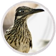 Greater Roadrunner  Round Beach Towel by Saija  Lehtonen