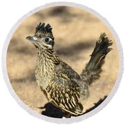 A Baby Roadrunner  Round Beach Towel by Saija  Lehtonen