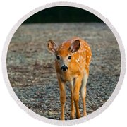 Bambi Round Beach Towel by Sebastian Musial