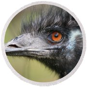 Emu Round Beach Towel by Karol Livote