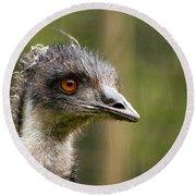 Emu Profile Round Beach Towel by Jean Noren