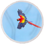 Into The Blue Round Beach Towel by Tony Beck
