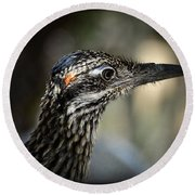Portrait Of A Roadrunner  Round Beach Towel by Saija  Lehtonen