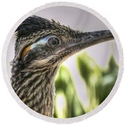 Roadrunner Portrait  Round Beach Towel by Saija  Lehtonen