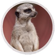 The Sentry Round Beach Towel by Michelle Wrighton