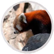 Valley Of The Red Panda Round Beach Towel by LeeAnn McLaneGoetz McLaneGoetzStudioLLCcom