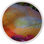 Round Beach Towel featuring the digital art Wonder by Richard Laeton